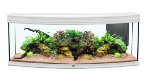 FUSION HORIZON 150x55x60 AQUARIUM wit